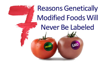 7-Reasons-GMOs-notlabeled2.jpg