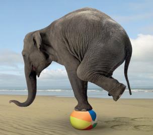 elefantbalans.png
