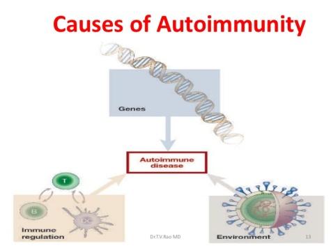 autoimmunity-13-728.jpg