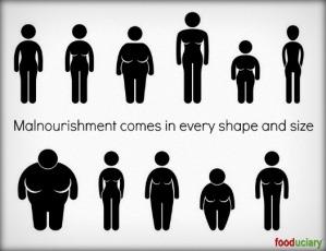 overfed-and-undernourished.jpg