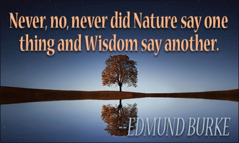wisdom_quote.jpg