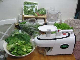 green-star-juicer-review.jpg